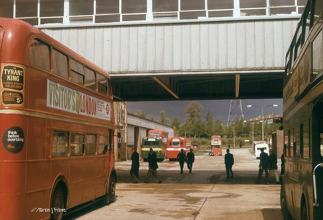 Lunch time - Aldenham  C02 037sm
