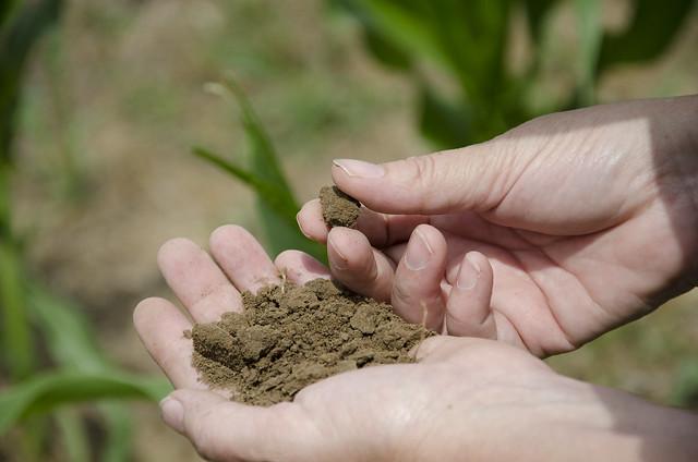 Soil Health_NR_06