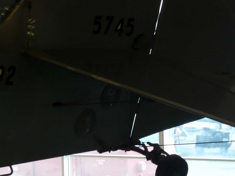 Taylorcraft L-2M Grasshoper 9