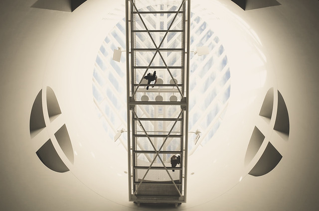 The Oculus Bridge