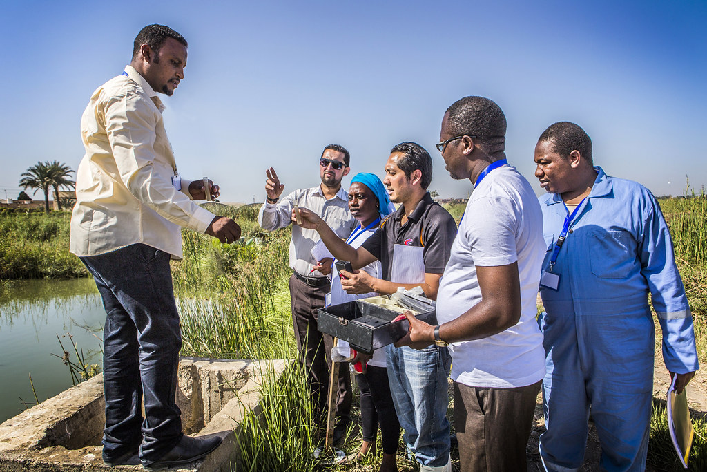 Trainees learn to test water quality of fish ponds in Abbassa, Egypt. Photo by Sara Fouad.