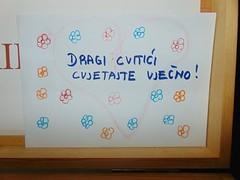 izlozba_cvitic_(14)