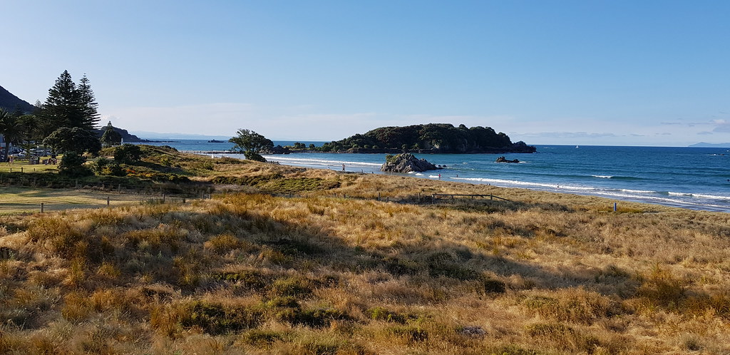 things to do in the bay of plenty