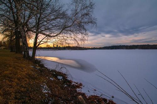 lakequannapowitt winter wakefield massachusetts sunset trees silhouette