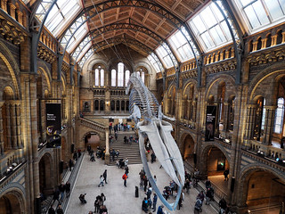 Natural History Museum | by Ungry Young Man