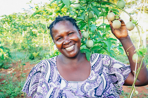 Uganda rural campus diversifies farmland with new fruit and vegetable crops; school year concludes with strong test scores among our students   by Peace Gospel