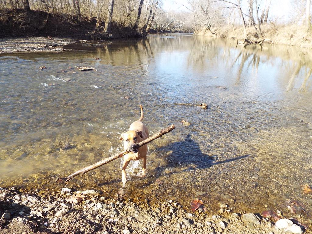 Clear Water Fun