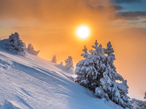 frozen trees sunset clouds light orange gold golden chartreuse grenoble chamechaude sun mist olympus panasonic 43 micro four thirds hybrid snow ski moutain neige moutains montagne
