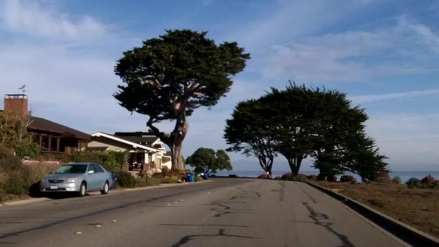 Along the Coast Between Monterey and San Simeon