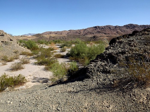 2017 arizona hiking mockingbirdwash lakehavasucity