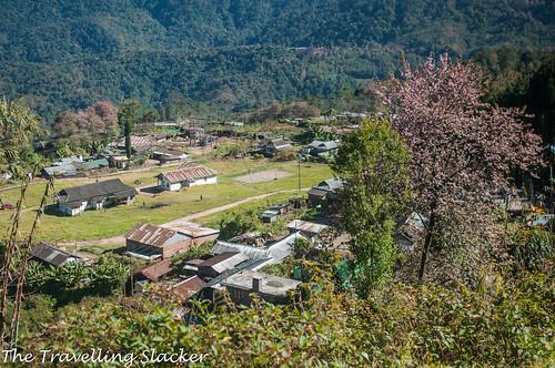 Pfutsero Phek Nagaland (18)   by travelling slacker
