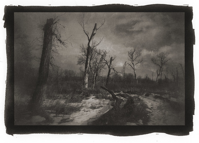 The Dead Zone pt/pd on Hahnemühle rag 12X17 cm