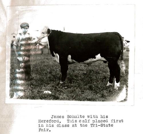 Des Moines County, Iowa 4-H History