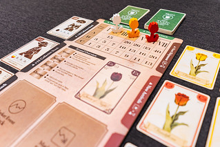 Tulip Bubble | by Doctor Meeple