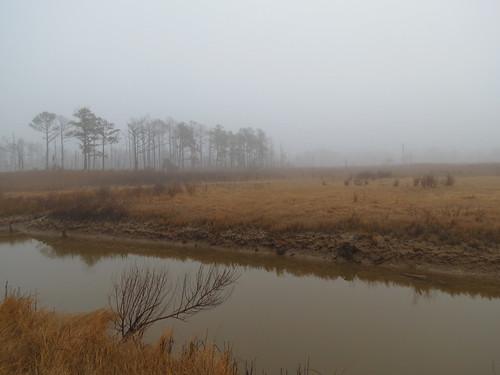 Photo of Fairmount Wildlife Management Area