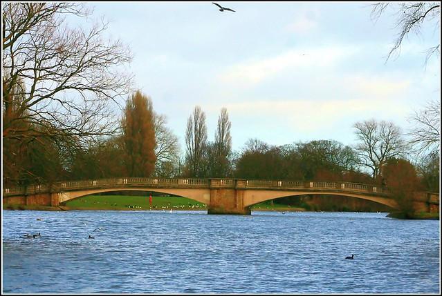 Bridge in the Park..