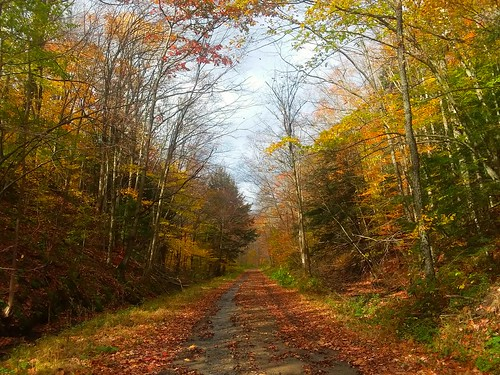 Autumn in Olean NY in the Mountians