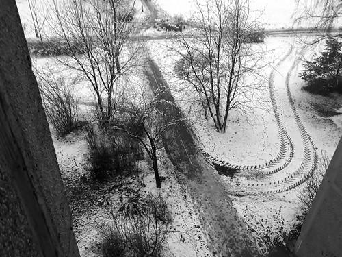 snow winter vilnius lietuva lithuania