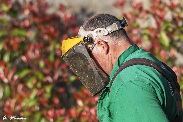 Labores de jardinería