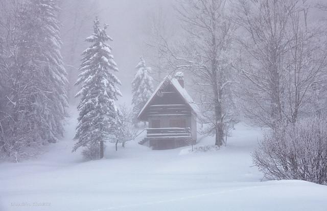 Zimska scena s Polana