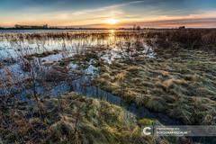 Sungai IJssel