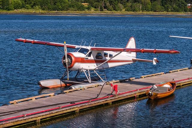 A Treasured Classic - DHC-2 Beaver