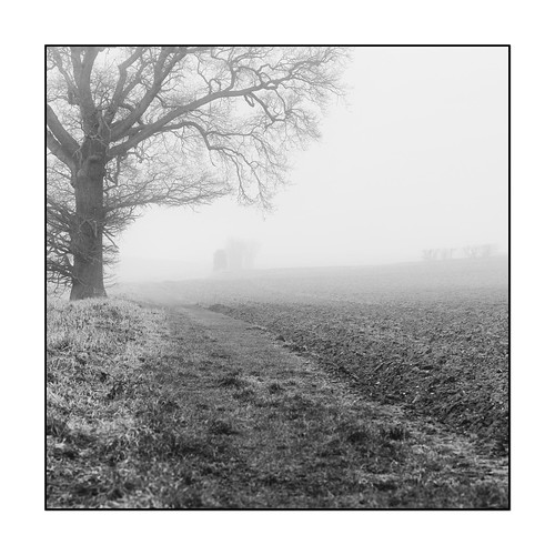 100xthe2018edition 100x2018 image11100 fog winter path field farm farmland countryside rural tree silhouette mystery mud mono monochrome blackandwhite bw my100x–squareformat naturalworld naturallight