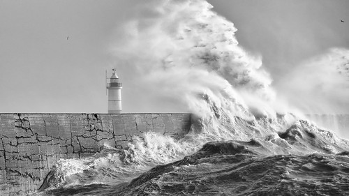 newhaven storm nikond810 nikon70200mmf28ii lighthouse sea seascape beach harbour tempest squall