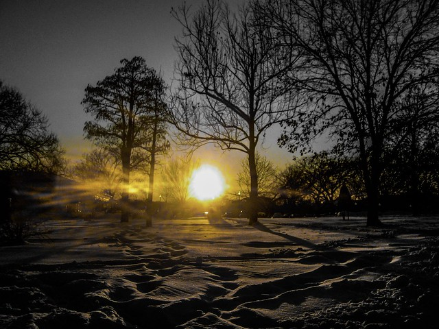 """""""The only certainty life contains is death."""" ―Patricia Briggs ❄️ ☀️ ❄️"""