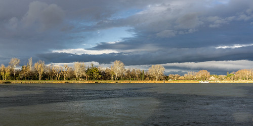 2017 rhône avignon eu provence river shore rive shadow pontd'avignon tree cloud water fluss france europa daylight day naturallight landscape