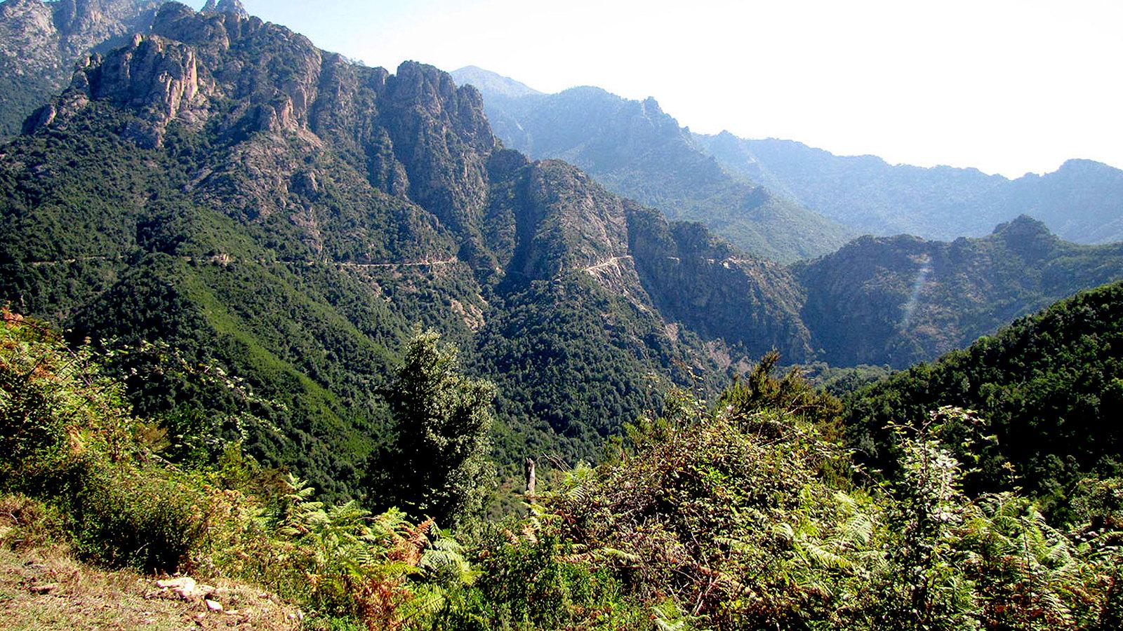 Road between Vico and Muna
