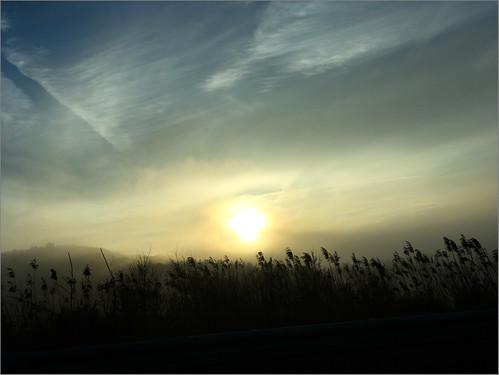 sky iphone sun dawn grass landscape clouds