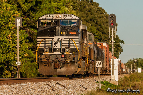 ns9875 ge c409w 391 ns391 sunset signal signals light lights sign ns nsmemphisdistrict nsmemphisdistrictwestend norfolksouthern memphis tennessee tree sky digital merchandise commerce business wow haul outdoor outdoors move mover moving scanlon mojo canon eos engine locomotive rail railroad railway train track horsepower logistics railfanning steel wheels photo photography photographer photograph capture picture trains railfan mp544