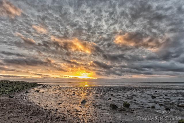 Sunrise in the mud