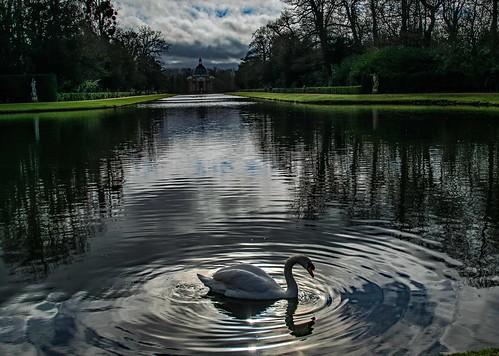 wrestpark silsoe bedfordshire uk heritagepark swan reflection water longpond grass tree sky