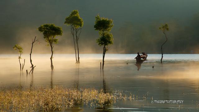 A peaceful scene - Dalat