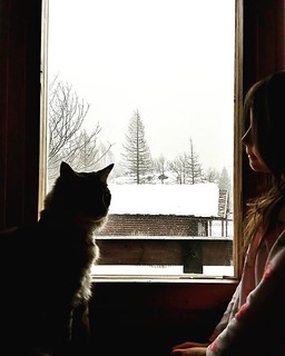A girl, a cat and the snow #snow #snowing #mountains #winter #life #family #love #cute #lovely #picoftheday #photooftheday #photography #trees #mybabygirl #kid #fun #pet #cat #instagood #igers #igersitalia #white #looking | by Mario De Carli