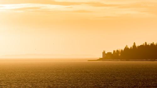 birds goodmorning haze lighthouse mist morninglight orange reducedvisibility silhouette horten vestfold norway no