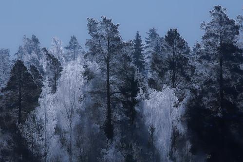 explore landscape outdoor canon canon7dmarkii winter