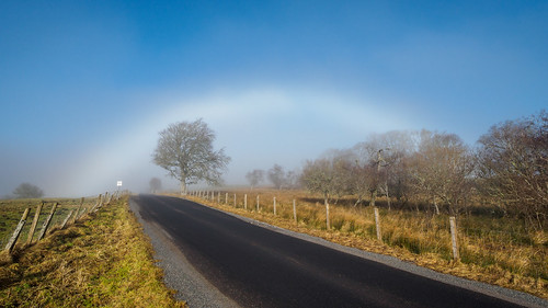 Mist Opportunity | by Highlandscape