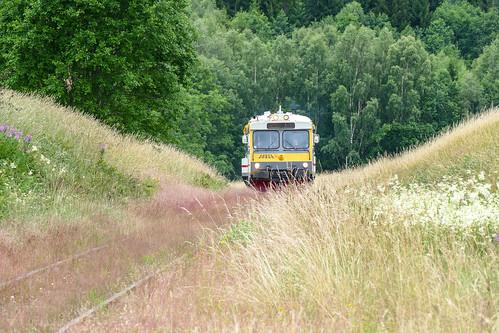 schweden högsbyn högsbynscamping sweden panasonic fz1000 zug train wiese gleis gleise schiene