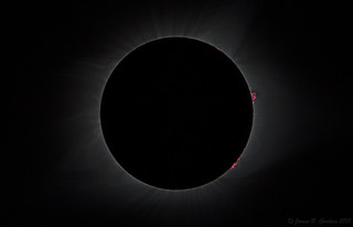 Prominences and Inner Corona