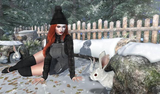Snow Bunny Magic