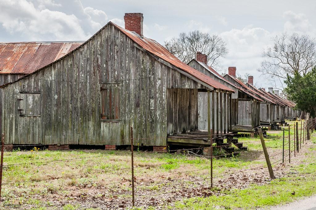 Laurel Valley Plantation -6243