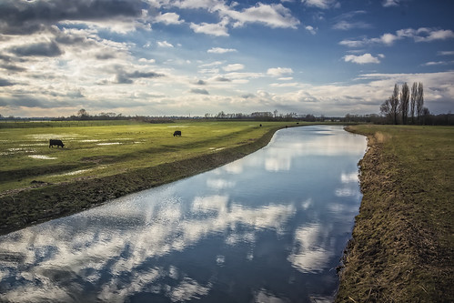 river sun riverscape lek elst spacefortheriver ruimtevoorderivier clouds cloudscape cloud landscape light netherlands nederland nature outdoors outdoor panorama provincieutrecht reflection ripples sony sky tree trees thenetherlands wimvandem water wetlands grass field golddragon