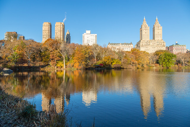 One Perfect Day in NYC