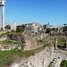 Forum Romanum, foto: Petr Nejedlý