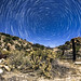 Star Trails in Valley of the Moon in Jacumba, California by slworking2