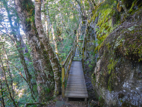 Stairs along the limestone bluffs   by snackronym