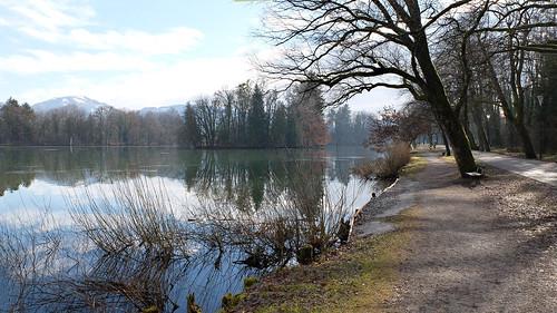 salzburg leopoldskron water trees winter austria promenade